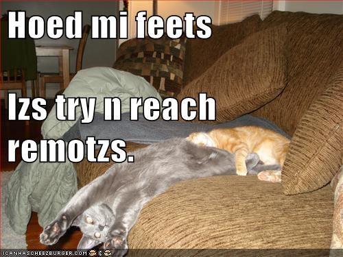 Hoed mi feets Izs try n reach remotzs.