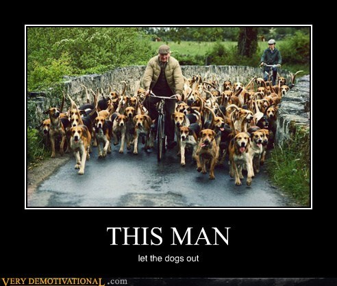 dogs hilarious old man wtf - 6199171072