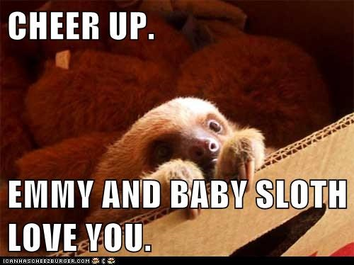 Cheer Up Emmy And Baby Sloth Love You Cheezburger Funny Memes