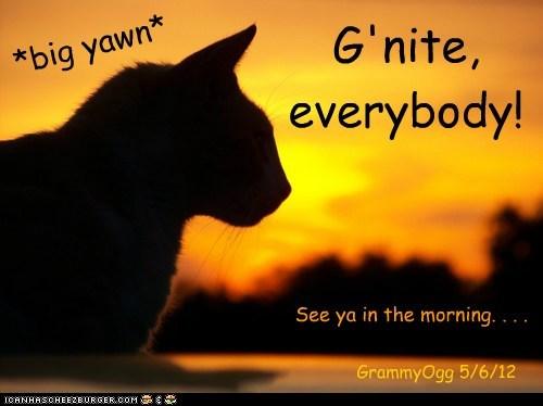*big yawn* G'nite, everybody! See ya in the morning. . . . GrammyOgg 5/6/12