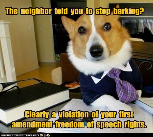 Lawyer Dog - 6200731136