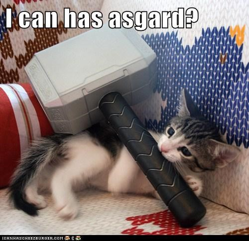 asgard,avengers,best of the week,Cats,Hall of Fame,hammer,i can has,lolcats,mjolnir,Thor,thunder,toys