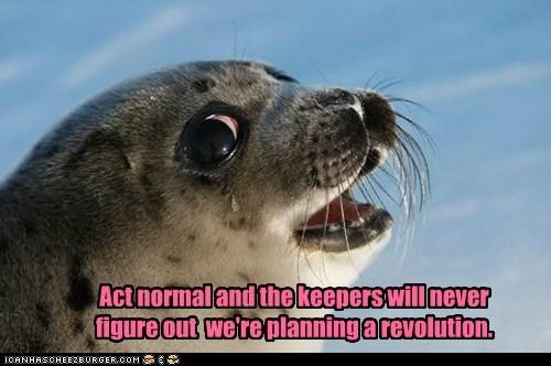 planning revolution seal zookeeper - 6201593344