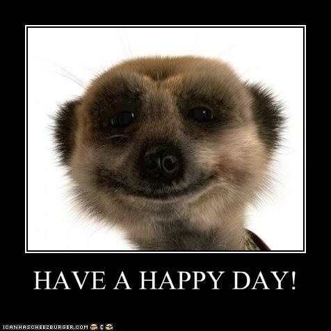 Have A Happy Day Animal Comedy Animal Comedy Funny Animals
