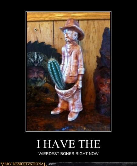 boner cactus cowboy hilarious - 6201748736