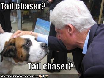 Cheezburger Image 620204288