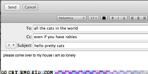 crazy cat lady,email,emolulz,i love cats,lonely