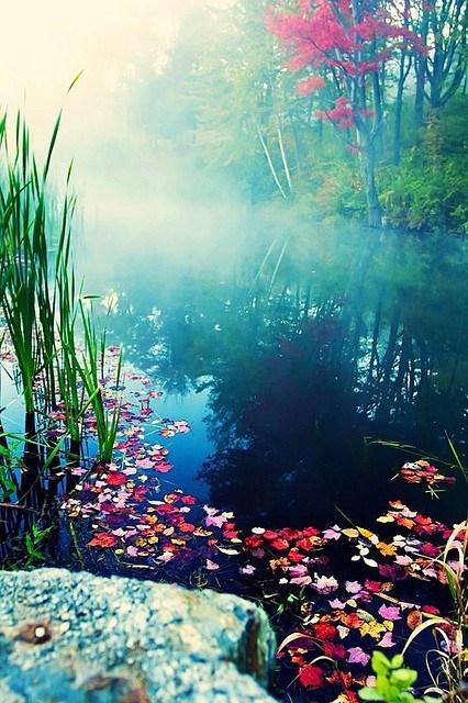 mist,pond,vermont