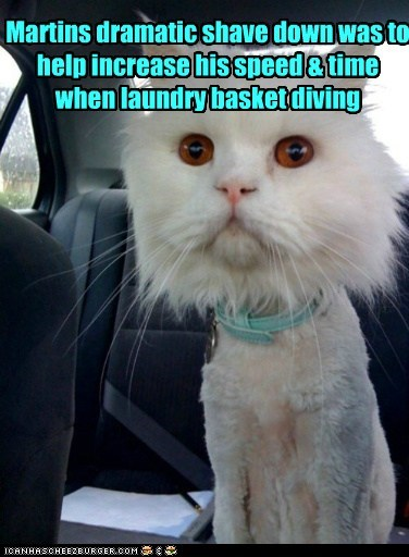 Martins dramatic shave down was to help increase his speed & time when laundry basket diving