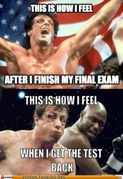 adrian,rocky,Sylvester Stallone,test humor,test taking