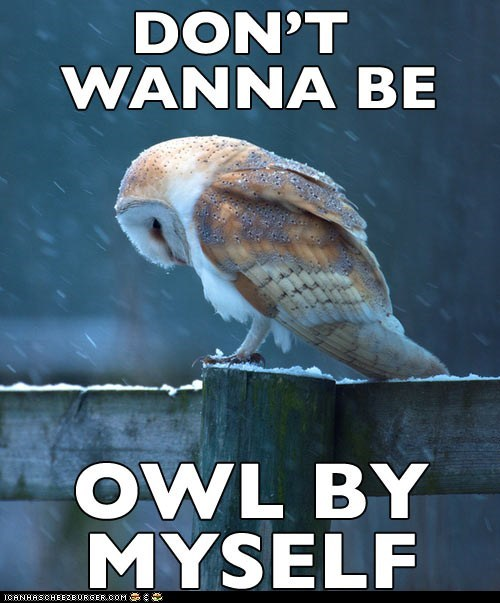 all,alone,lyrics,Owl,prefix,pun,Sad,solo,song