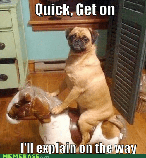 ill-explain,Memes,no time to explain,pug,rocking horse