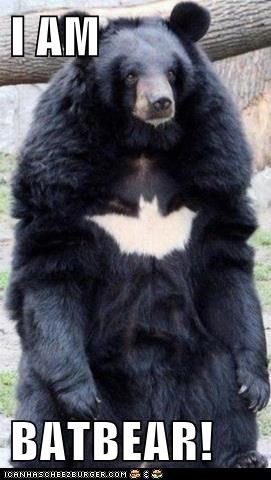 batman bear bears best of the week Hall of Fame i am batman insignia standing the dark knight rises