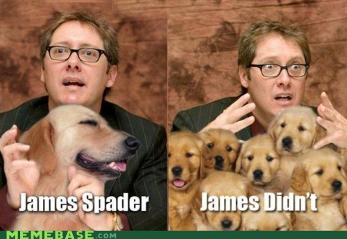 James Spader,Lame Pun Coon,puns