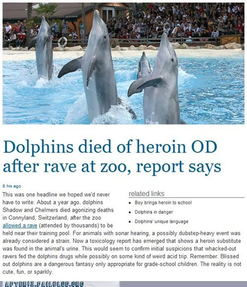 dolphins,heroin,OD,overdose,rave,ravers,swiss rave,Switzerland