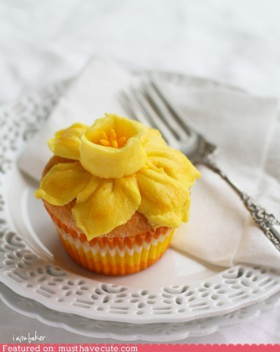cupcake,daffodil,Flower,frosting,spring,yellow