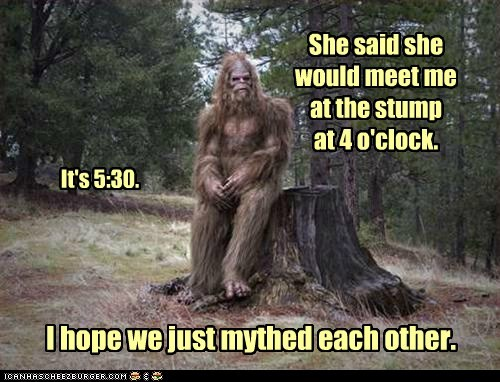 bigfoot emo Forest Hall of Fame sasquatch tree stump - 6203278592