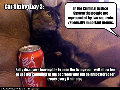 Cat Sitting Day 3: Sally discovers leaving the tv on in the living room will allow her to use her computer in the bedroom with out being pestered for treats every 5 minutes. In the Criminal Justice System the people are represented by two separate, yet equally important groups.