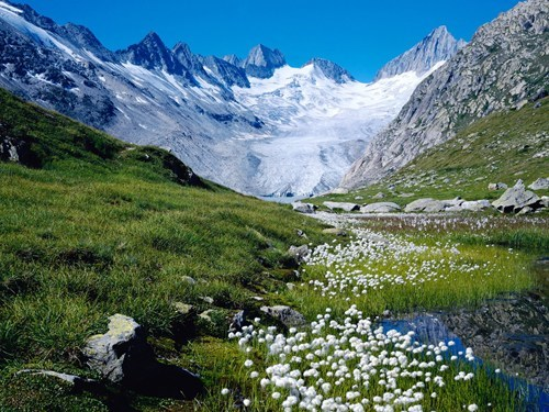 meadow mountain snow stream Switzerland - 6204283904