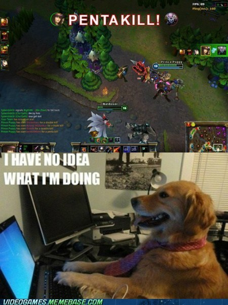 dogs,i-have-no-idea-what-im-d,i have no idea what im doing,league of legends,meme,pentakill