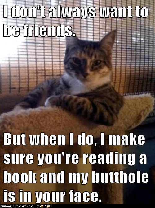 annoying books butthole Cats friends gross Hall of Fame in your face Memes the most interesting cat the most interesting cat in the world the most interesting man in the world - 6205916416