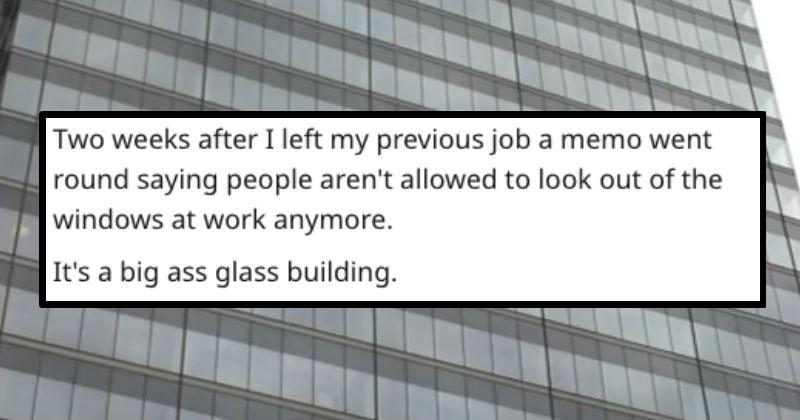 Dumbest Job Rules