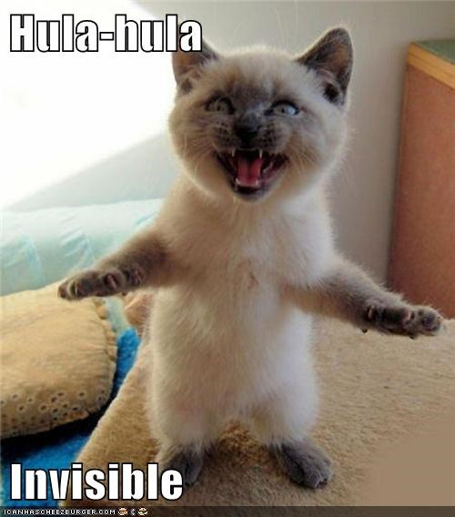 Hula-hula Invisible