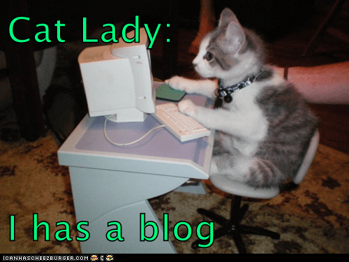 Cat lady blog