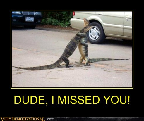 dude hilarious hugging lizard - 6206621440