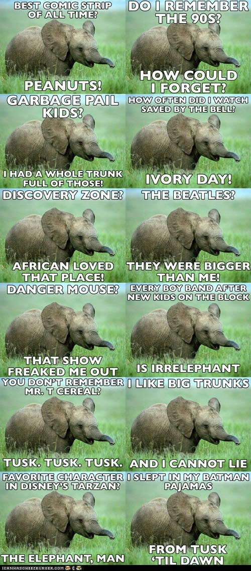 elephant,elephants,Hall of Fame,Memes,nostalgia,nostalgia elephant