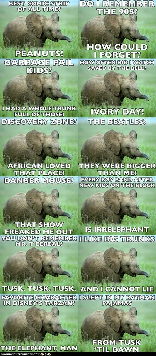 elephant elephants Hall of Fame Memes nostalgia nostalgia elephant - 6206743808