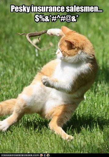 bite cat insurance lizard sales salesman swear - 6207084288