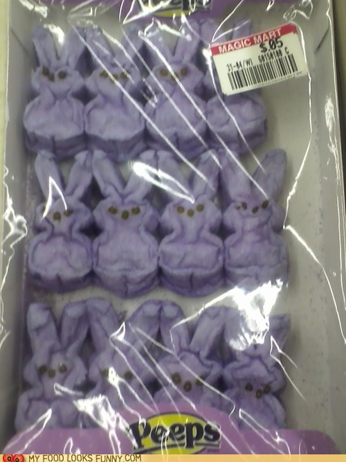 5 cents,bunnies,dry,marshmallow,old,on sale,peeps,Sad