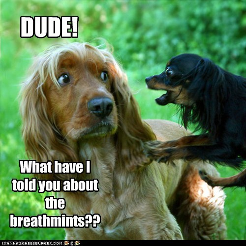 DUDE! What have I told you about the breathmints??