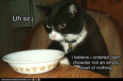bowl,Cats,chowder,complain,complaining,empty,food,lolcats,order,restaurant,soup,waiter