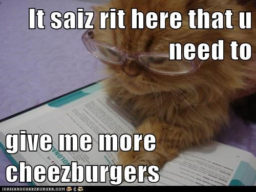 Cheezburger Image 6207770368