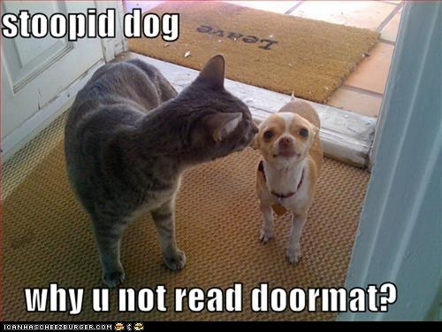 dogs,door,doormat,dumb,go away,leave,read,stupid