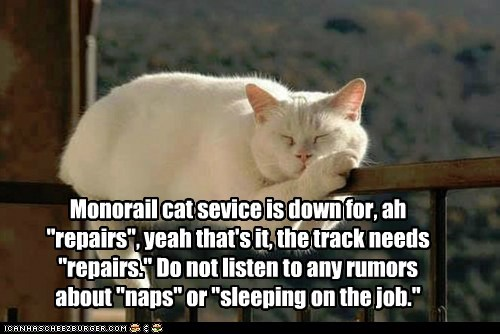 "Monorail cat sevice is down for, ah ""repairs"", yeah that's it, the track needs ""repairs."" Do not listen to any rumors about ""naps"" or ""sleeping on the job."""