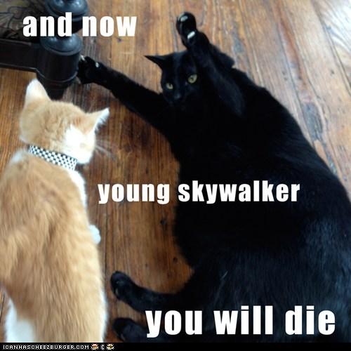 darth vader dramatic Luke Movie reference star wars
