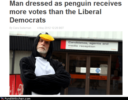 liberal democrats,penguins,political pictures,scotland