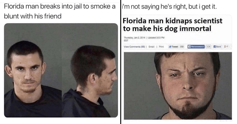 Funny Florida Man Headlines