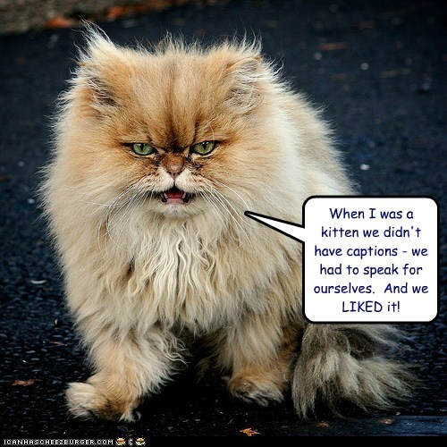 captions Cats complain Grandpa grandparents grumpy lolcats mean old self referential when I was your age - 6210581504