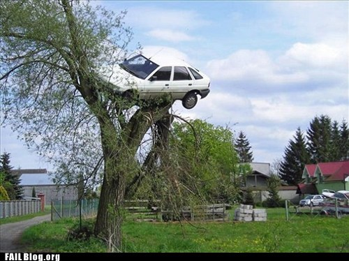 car,stuck,tree