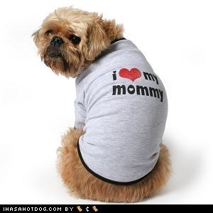 dogs mommy mothers day what breed - 6210813952