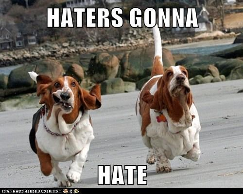 blood hound dogs haters gonna hate swagger - 6211739136