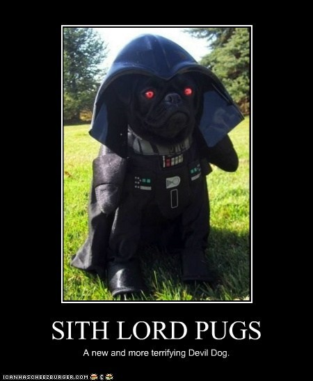 SITH LORD PUGS A new and more terrifying Devil Dog.