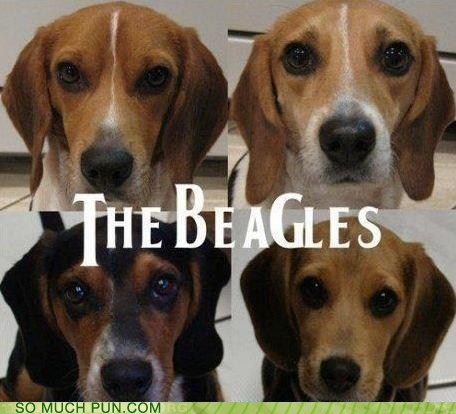 artwork beagle beagles dogs g Hall of Fame letter literalism logo replacement similar sounding t the Beatles