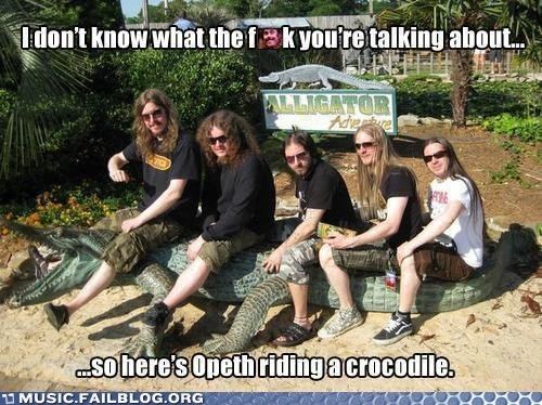 crocodile,metal,opeth,your argument is invalid