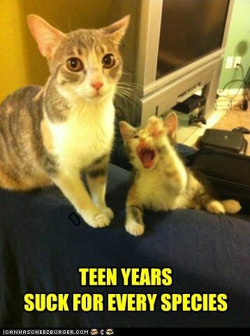 age annoying brat mom parent teen teenage - 6212788224