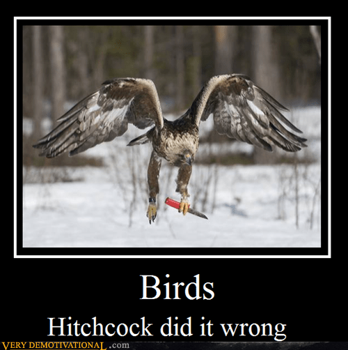 bird,hilarious,hitchock,knife